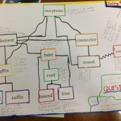 Showing relationships and understandings of morphological terms
