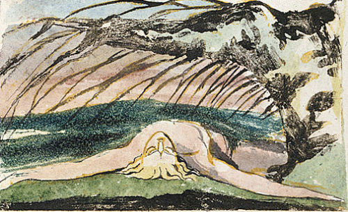 Illustrated version Of William Blake's poem, The Poison Tree from Songs of Innocence and of Experience, 1794