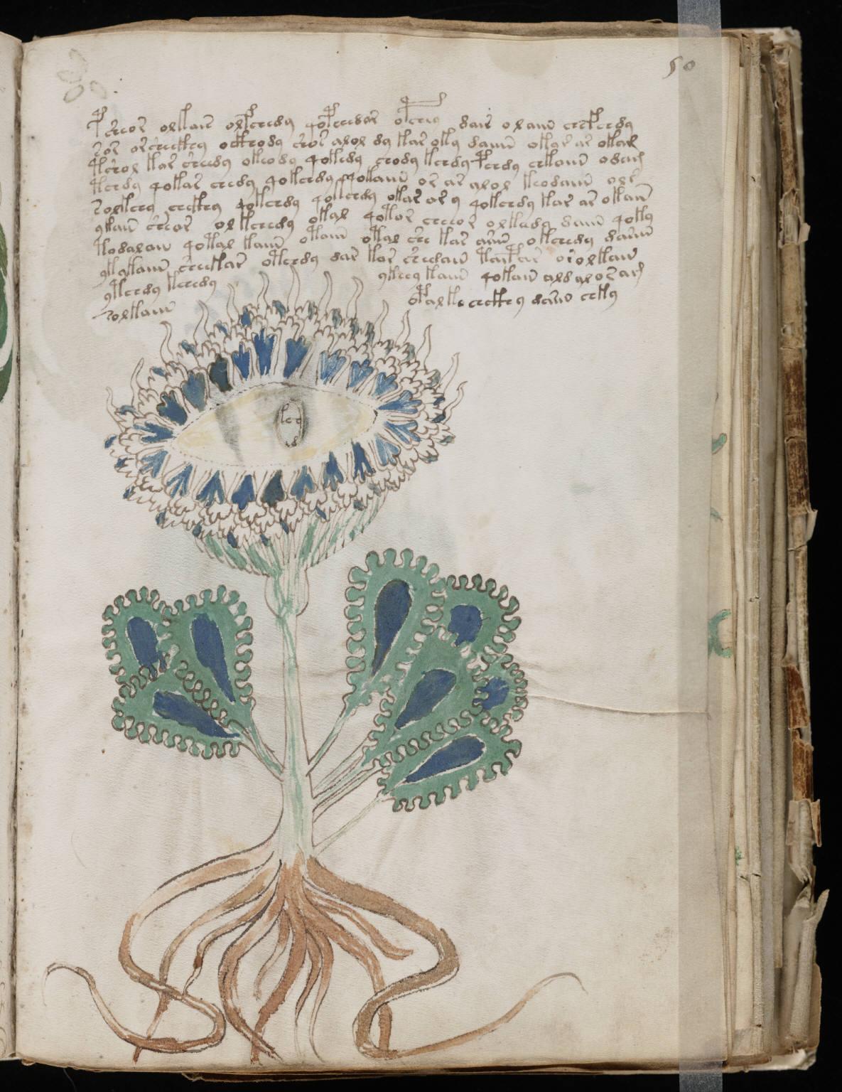 manuscrito097